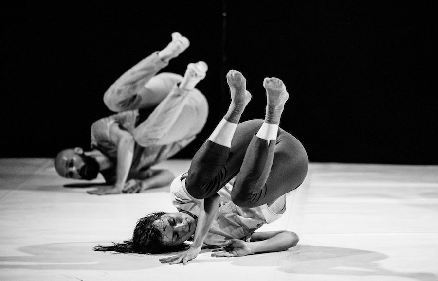 The Contemporary Dance Chronicles